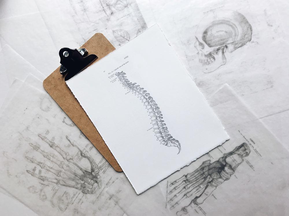 Få hjælp til dine rygproblemer hos en kiropraktor